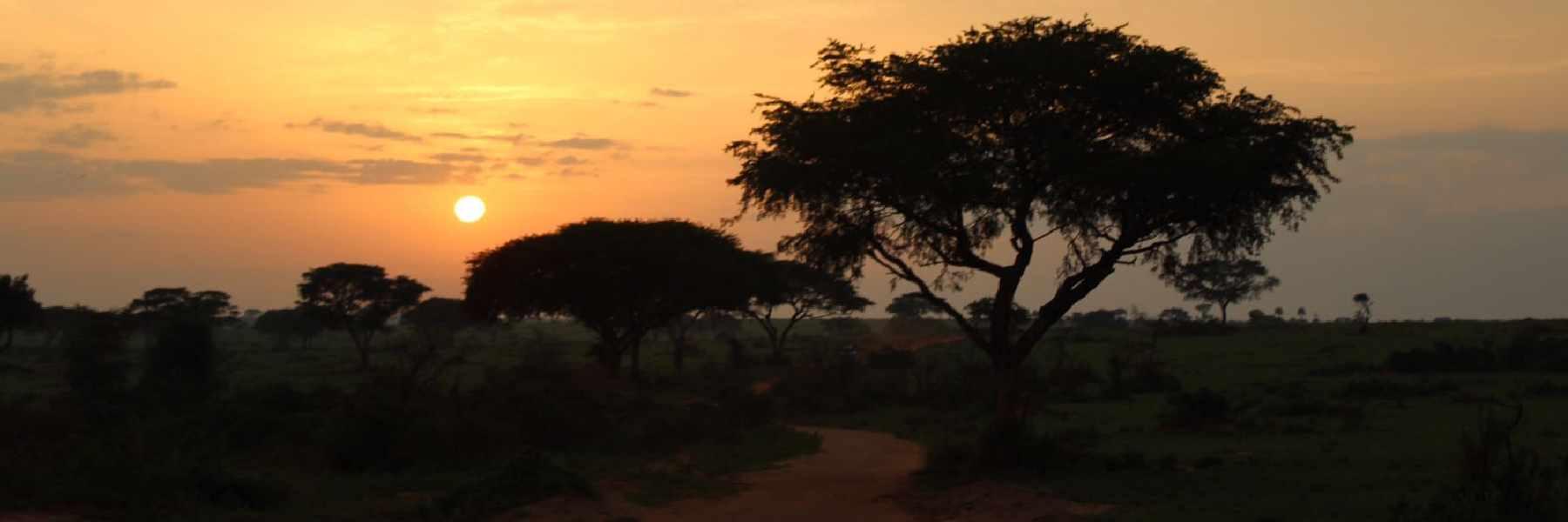 Voluntariado en Uganda