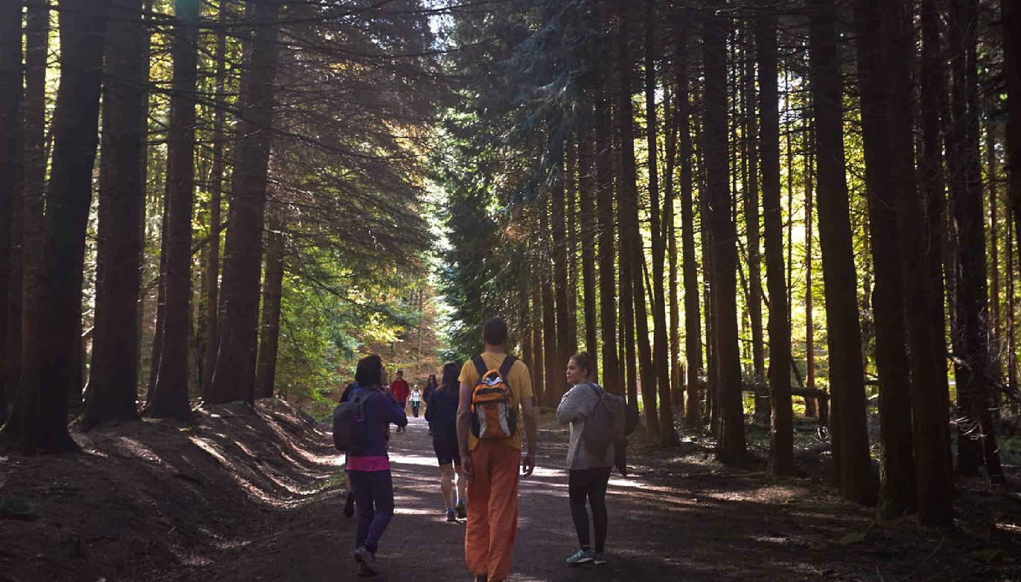 Senderismo y meditación conectando con la naturaleza