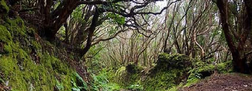 naturaleza en cerdeña