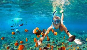 snorkel españa