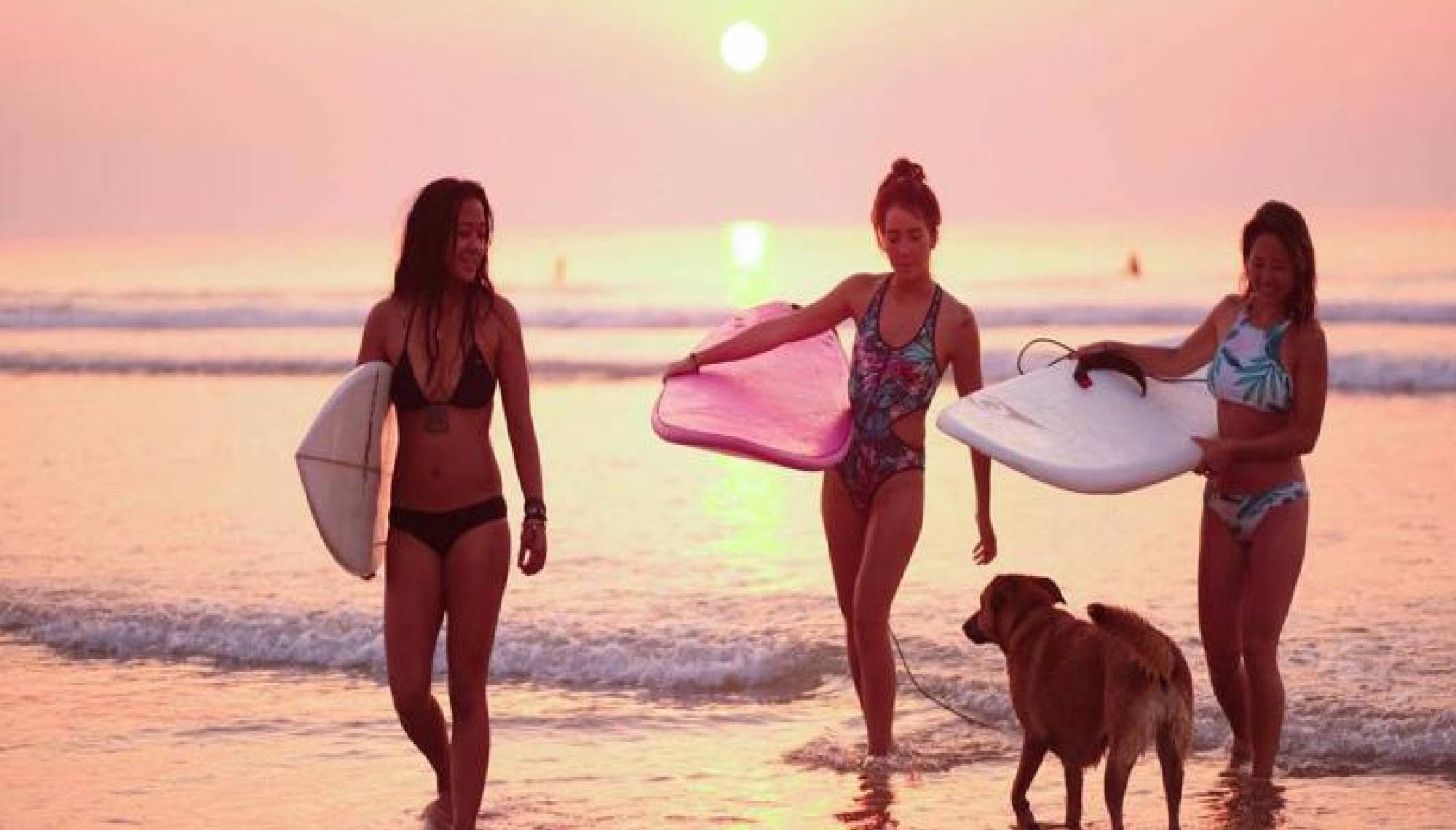 surf & camping santander